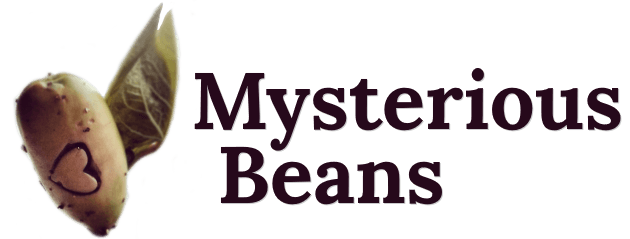 Mysterious Beans - Things we eat and places we go